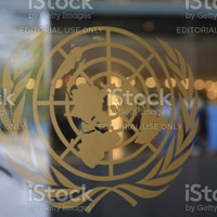 Consultancy United Nations